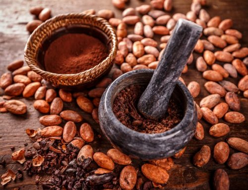 Marbon chocolade in Breda